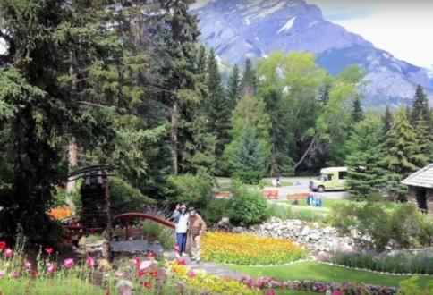 Walking in Banff Park